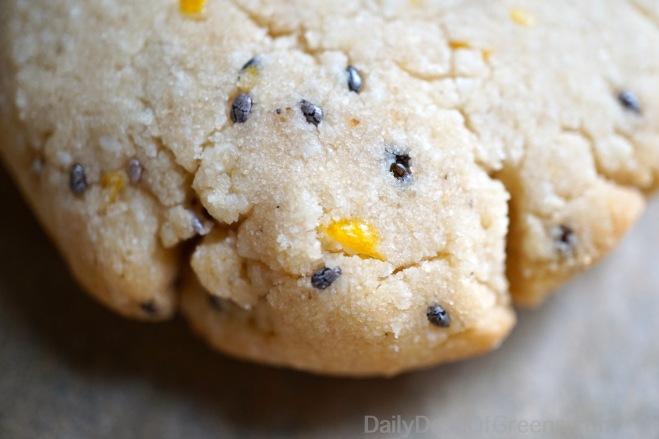 Lemon Chia Shortbread Cookies (vegan & GF)